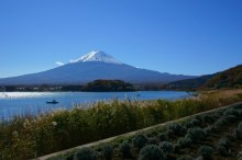 河口湖から富士山